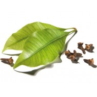 Clove Leaf (Eugenia Caryophyllata)