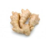 Ginger (Zingiber Officinalis)