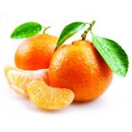 Tangerine (Citrus Reticulata)